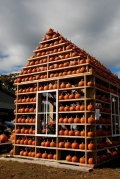 pumpkinhouse